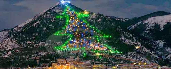 Foto albero di natale piu grande del mondo